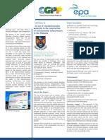 westmeath county council cgpp 2 19 summary