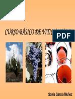 Bases de VitiCultura