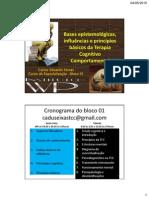 Bases epistemológicas, influências e princípios básicos da Terapia Cognitivo Comportamental