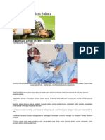 Kecederaan Dalam Sukan - Lutut