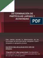 106954325 Particulas Chatas (1)