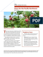 Raspberry Cultivars for the Pacific Northwest