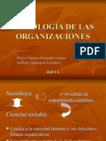sociologiadelasorganizaciones-120917015339-phpapp01