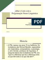 IV Coloquio APELO Coimbra PNL Dra InesMelo
