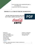 Referat Cercetări de Marketing