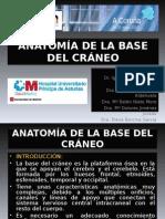 Anatomia de La Base Del Craneo (1)