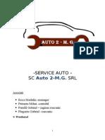 infiintare service auto