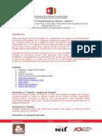 NESsT_Formular Plan de Afaceri _partea I