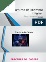 Presentacion Femur Unidad 2