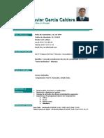 Curriculum Vitae Leandro Garcia