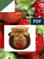 controlul tehnic  dulceata de capsuni.docx
