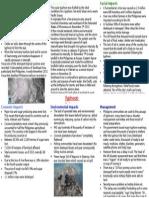 Typhoon Haiyan Case Study Finished