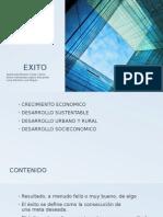 EXITO (1)