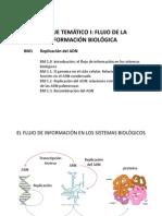 Replicacion Del Adn 2013 14