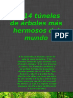 14  túneles