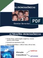 Alterações Cromossômicas_Genética Humana