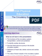 1  the circulatory system