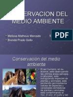 Comservacion Del Medio Ambiente