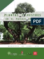 plantas_silvestres