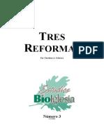 3 Christian a. Schwarz - Tres Reformas