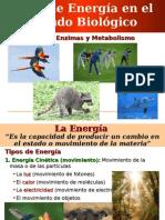 Clase 05 - Energia, Enzimas y Metabolismo