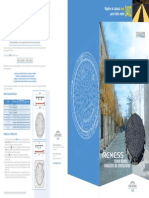 Triptico-REXESS.pdf