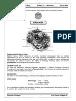 1b Ficha01 Biologia 3erano