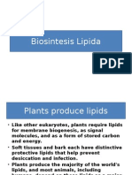 Biosintesis lipida