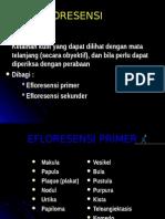 kulit-efloresensi