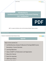 1-4 E-book - Introduction to Certified Business Analysis Professional Training