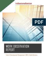 portfolio work observation report