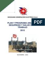 Programa Anual de Seguridad y Salud Año 2015
