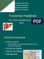 Funciones hepáticas