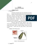 colelithiasis