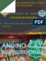 «Tecnicas de Auditoria«