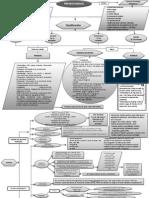Mapa_mental_prematuro.pdf