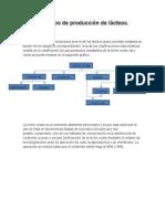 Caracterización del sector agroexportador