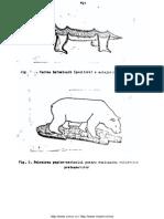 Cercetari-biologie-7
