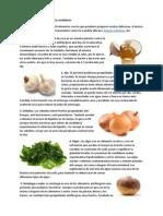 10 Alimentos Para Combatir La Candidiasis