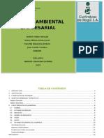Gestion Ambiental Emresarial