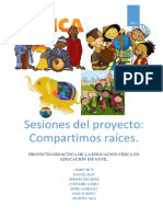 Proyecto sesiones