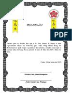 Declaração Kung Fu
