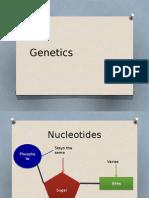 Genetics powerpoint for AQA Biology Unit 2