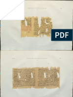 Pap Leiden 347 (Leeman)