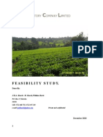 Feasibility Study TET TEA FACTORY