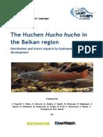 Hucho - Freihof Et Al 2015 BHE