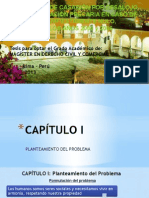 Modelo Ppt (1)