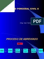 10 PROC_ ABREVIADO.ppt