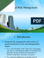 Financial Risk (2)kkkkkkkkkkkk