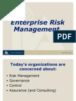 Enterprise Risk Management (3)